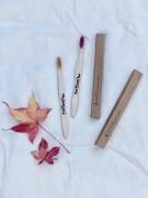 Cepillos diente bambu