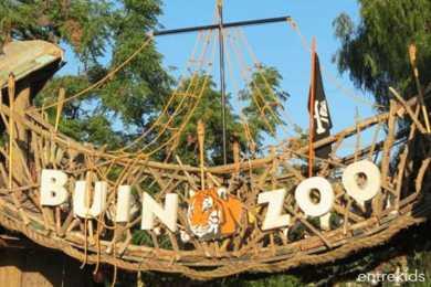 Ven a disfrutar de un día en Buin Zoo (Fast Pass) - Panoramas con niños